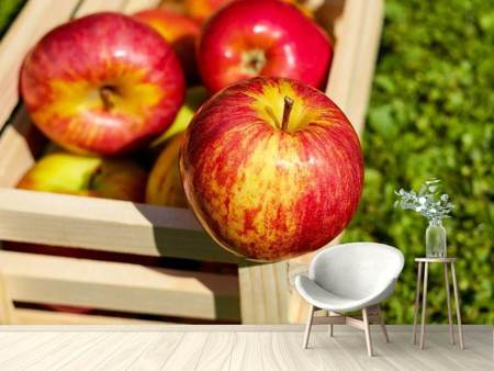 Photo Wallpaper Box of apples
