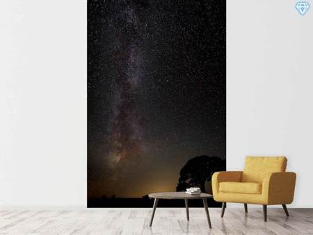 Papier peint photo Milkyway