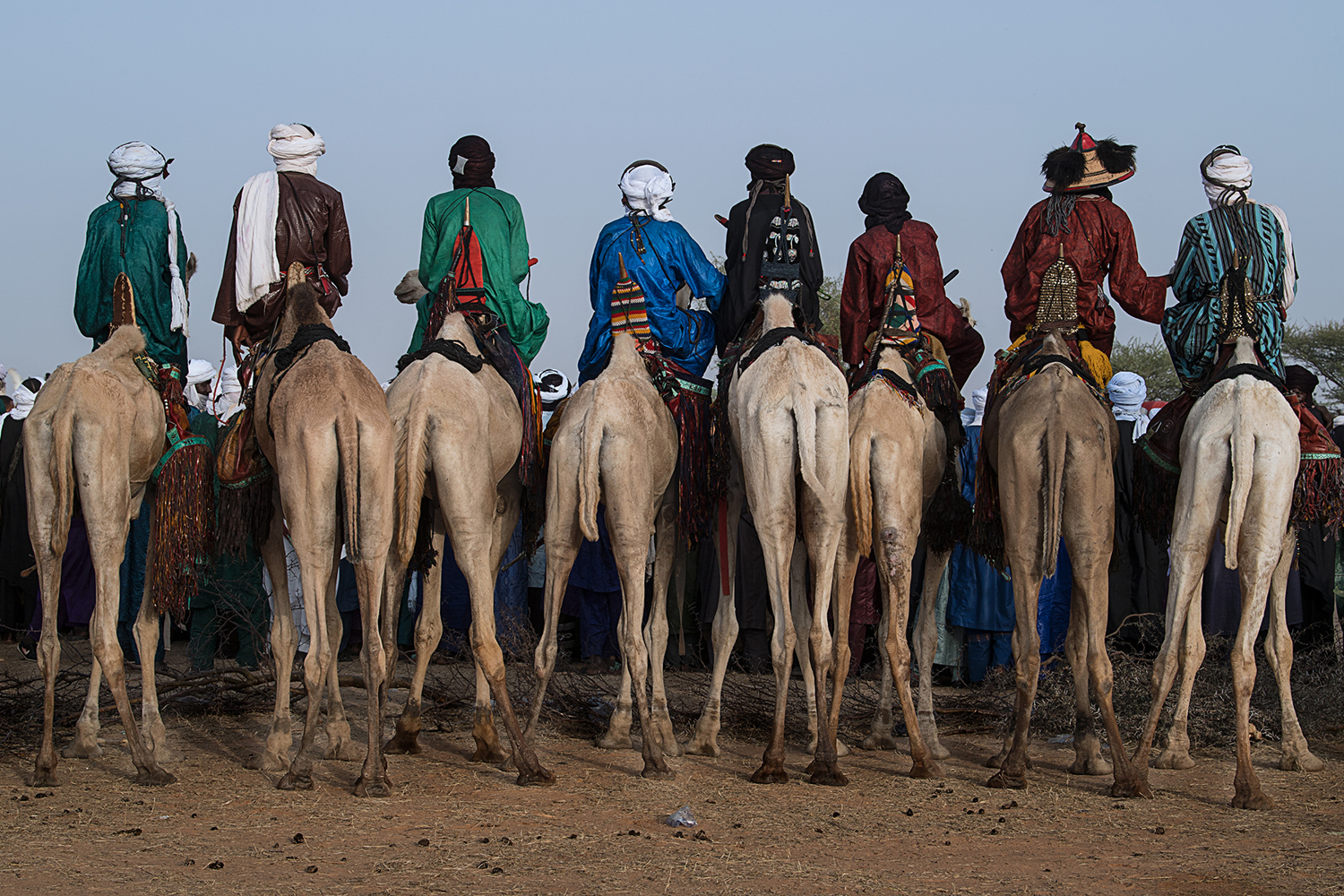 Papier peint photo Watching The Gerewol Festival From The Camels - Niger
