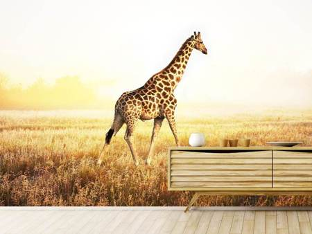 Photo Wallpaper The Giraffe