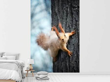 Photo Wallpaper The Squirrel