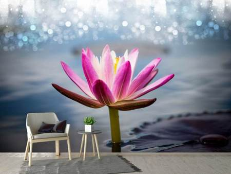 Photo Wallpaper Lotus In The Morning Dew