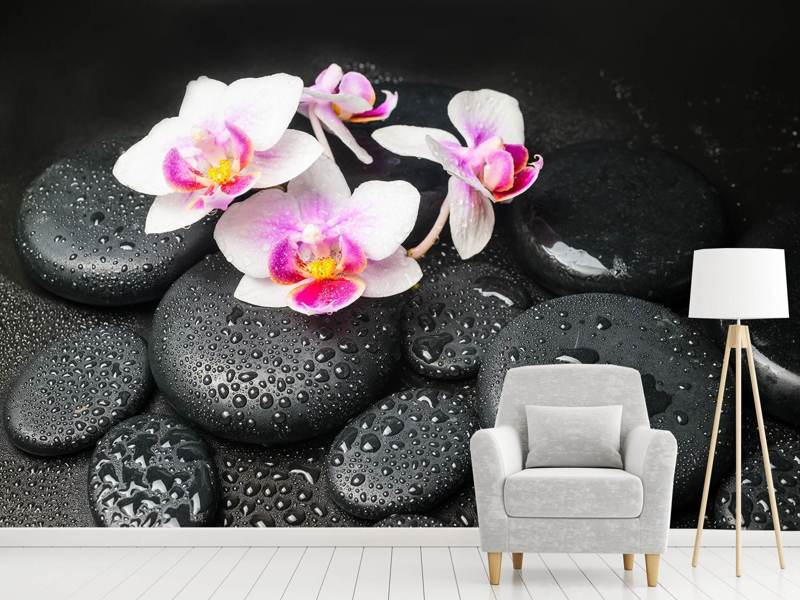 Photo Wallpaper Feng Shui Orchid Zen