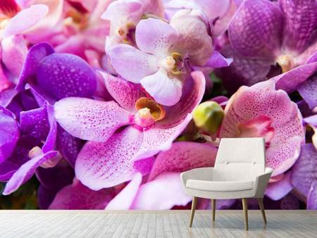 Photo Wallpaper Orchid Paradise