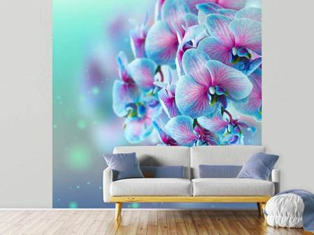 Photo Wallpaper Colored Orchids